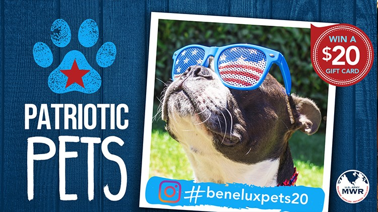 4th of July Patriotic Pets Instagram Contest
