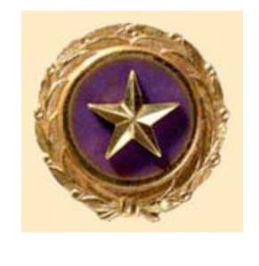 goldstar-pin.png